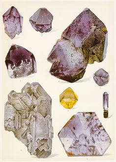 Crystal formations via RAAK Nature Illustration, Botanical Illustration, Vintage Artwork, Vintage Posters, Collages, Collage Art, Nature Drawing, Mineralogy, Hippie Art