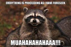 Evil Plotting Raccoon = palpatine