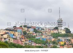 Download this stock image: Low angle view of picturesque colored poor houses at the top of a hill at Cerro Santa Ana in Guayaquil, Ecuador. - FHY8DF from Alamy's library of millions of high resolution stock photos, illustrations and vectors.