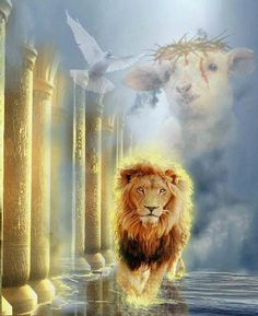This is a beautiful illustration of the Lion of Judah and the Lamb of God who takes away the sins of the world ...Thank you Jesus :)