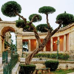 Corfu Greece, Pergola, Outdoor Structures, Mansions, House Styles, Home Decor, Corfu, Travel Destinations, Viajes