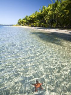 Bocas Del Toro, Panama   - Explore the World with Travel Nerd Nici, one Country at a Time. http://TravelNerdNici.com