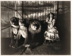Adjie the Lion Tamer.  Vintage Circus Photograph Reproduction black and white. circa 1899.