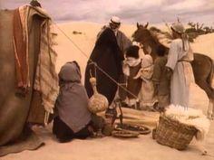 ▶ El caballo árabe - YouTube