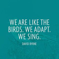 """""""We are like the birds. We adapt. We sing."""" — David Byrne"""