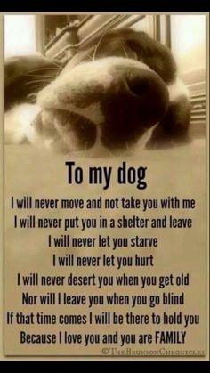 We kept this promise to her until the end. We loved her as a cute, bouncy puppy and still loved her when she was blind, deaf, old, confused and could hardly walk and we were there with her at the very end. The years went by way too fast.