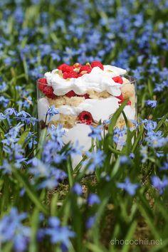 Vegan Cake Bowl   Chocochili.net