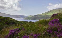 #Ireland #landscape
