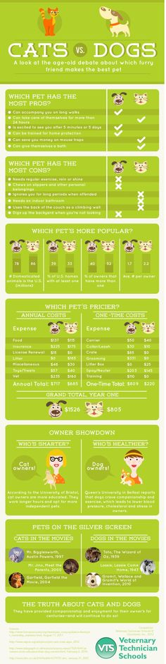 A look at the age-old debate about which furry friend makes the best pet.
