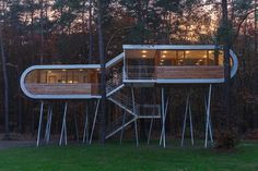 house on stilts in the forest