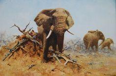 Elephants - David Shepherd