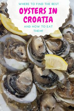 Did you know that oysters in Croatia are one of the best places on the planet to sample these tasty mollusks? Here is where to find the tastiest oysters In Croatia. Croatia Destinations, Croatia Itinerary, Croatia Travel Guide, Travel Destinations, Best Oysters, Visit Croatia, Drinking Around The World, Mexico Vacation, California Travel