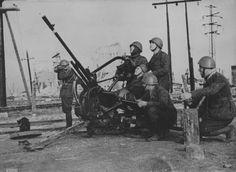 Mitragliera Breda 20 mm - italian Army WW2, pin by Paolo Marzioli