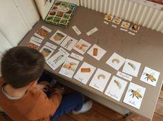 Monopoly, Children, Home