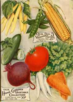 The inside of the back cover of the 1917 Farmer Seed & Nursery catalog features color illustrations of a myriad of vegetables -- the whole collection for only 30 cents!  Farmer Seed & Nursery originated in Faribault, MN in 1888. Andersen Horticultural Library hosts a  collection of vintage Farmer Seed & Nursery catalogs.