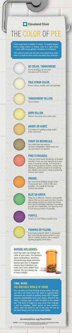 """The color of urine can tell you a lot about your body. Here's a chart of urine colors and what they indicate..."""