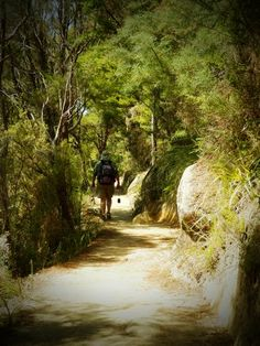 I am not a devotee of the LOTR trilogy. In fact, the movies put me to sleep. However, I have been to Middle Earth (aka New Zealand), and I fell in love with that beautiful country. Abel Tasman National Park, South Island, New Zealand Today, September 22nd, is the birthday of Bilbo and Frodo Baggins.