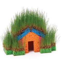 7 Quirky Indoor Grass Gardens Tutorial