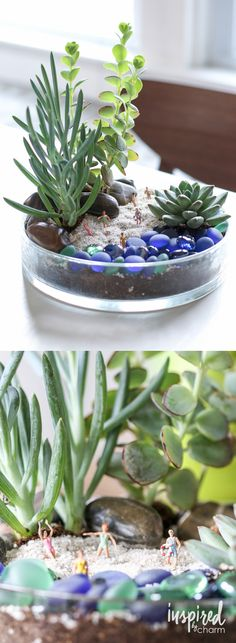 "Beach Bum Terrarium / A cute little tabletop garden designed to look like a beach. Complete with little ""beach bum"" figures dressed in their swimsuit. Every space needs a touch of quirkiness. This is perfect!"
