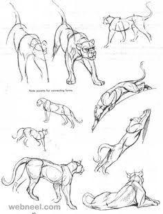 Resultado de imagen para panther drawings sketches