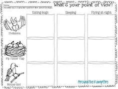 Stellaluna point of view freebie