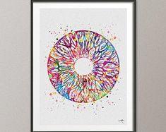 Human Eye Watercolor Print Optometrist Gift Optician Poster | Etsy Free Prints, Prints For Sale, Mat Paper, Eye Doctor, Medical Art, Human Eye, Optician, Watercolor Print, Fine Art Paper