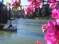 Lago Negro em Gramado RS