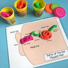 self-advocacy parts of the ear play doh Matt - Speech Language Therapy, Speech And Language, Ear Parts, Parts Of The Ears, Hearing Sounds, Sound Science, Self Advocacy, Hearing Impaired, Kindergarten Lessons