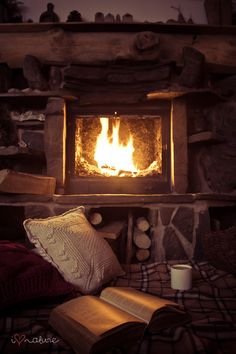 Fire, a great book, comfortable pillows, cozy blankets, and something warm to drink.  THIS is what a winter evening should look like.