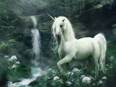 Which Magical Creature Are You? You are a unicorn! You are a very peaceful and kind person. You also know how to stay calm and you are the type of person that will help a random stranger in need. You also love nature and have great respect for the environment.