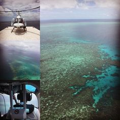 Helicopter ride over the Great Barrier Reef #reefmagic #queensland #cairns #greatbarrierreef #view #beatifiul #peaceful #perfect #helicopter #helicopteride #Australia #contiki #contikiaustralia #nature #wildlife #reef by ellywood_96 http://ift.tt/1UokkV2