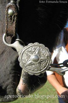 Concurso de aperos crioulos de Bagé Real Cowboys, Western Tack, Horse Bits, Saddles, Gold Leather, Embellishments, Copper, Fancy, Horses