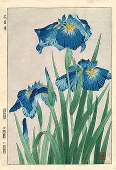 Iris, Blue  by Kawarazaki Shodo, 1954  (published by Unsodo)