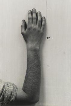 grupaok:  Mel Bochner, Actual Size (Hand), 1968