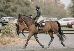 Why do you think is it essential to consider the proper suggestions in acquiring the equestrian boots to be utilized with or without any horseback riding competitors? Equestrian Boots, Equestrian Outfits, Equestrian Style, Pretty Horses, Beautiful Horses, Types Of Horses, English Riding, Show Jumping, Horse Pictures