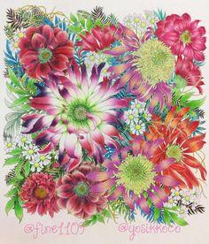 fineさん(@fine1109 )とのコラボ作品です 左側のお花がfineさんが塗って、右側のお花と小さな白いお花を私が塗りました この塗り絵本はfineさんので、最初にfineさんが塗られてから私が塗ったんですが、fineさんの塗り絵が素敵すぎて調和とれるか⁉️ と思いましたが、カランダッシュのフルブレンダーに初の大活躍してもらって、なんとかバランスとれたかな?と思ってます 楽しかった〜❤❤ #大人の塗り絵 #塗り絵 #ぬり絵 #ぬりえ #コロリアージュ #色鉛筆 #油性色鉛筆 #ファーバーカステル #ファーバーカステルポリクロモス #ポリクロモス #ホルベイン #カリスマカラー #フルブレンダー #世界一美しい花のぬり絵book #coloful #coloring #coloriage #coloringbooks #coloringbook #fabercastell #fabercastellpolychromos #polychromos Coloring Canvas, Coloring Book Art, Doodle Coloring, Coloring Tips, Adult Coloring Pages, Doodle Sketch, Doodle Drawings, Doodle Art, Colorful Garden