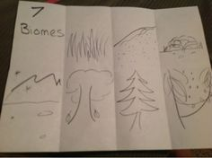 everyday memories- week one how to present your material.  science biomes drawing.  classical conversations cycle 2 week 1 new grammar