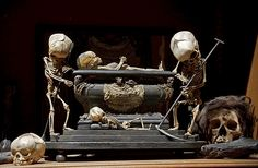 Fetal Skeleton Tableau, 17th Century, University Backroom, Paris (by astropop)