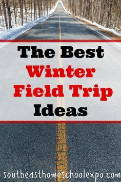 The Best Winter Field Trip Ideas for Days When it's Really Cold Cold days do not mean you can't take a fun homeschool field trip. Here are some of the best winter field trip ideas for days when it is really cold. Snow Activities, Travel Activities, Best Homeschool Curriculum, Homeschooling Resources, Interactive Learning, Fun Learning, Virtual Field Trips, School Fun, Family Travel