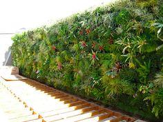 jardin en pared - Google Search