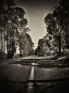 Eucalyptus road by Pygmalion Karatzas Ancestry, Greece, Country Roads, Black And White, Places, Beauty, Greece Country, Black White, Beauty Illustration