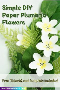 paper project, cricut joy idea, free svg template, diy decor How To Make Paper Flowers, Giant Paper Flowers, Felt Flowers, Plumeria Flowers, Tropical Flowers, Paper Flower Tutorial, Flower Template, How To Make Diy, All Paper