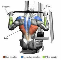 Lat pull downs for those back gains