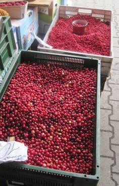 currants at the market, Zakopane, Poland