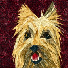 silver linings canine corner cairn terrier