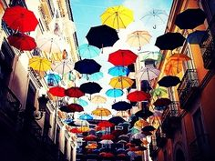 parapluie!