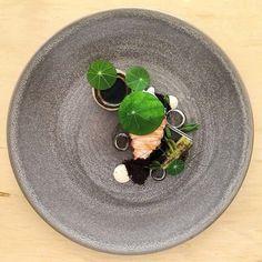 Moreton Bay Bug, Black Garlic, Ink @joshretzz #gourmetartistry