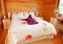 Forest View Retreat Forest Cabin, Forest View, Countryside, Bed, Holiday, Furniture, Home Decor, Vacations, Stream Bed