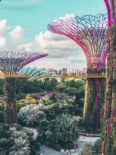 Gardens by the Bay in Singapore. Gärten an der Bucht in Singapur. Singapore Vacation, Singapore Travel Tips, Singapore Attractions, Tourist Spot In Singapore, Singapore Itinerary, Singapore Garden, Singapore Singapore, Voyage Quotes, Places To Travel
