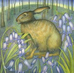 'Bluebell Hare' By Kate Green. Blank Art Cards By Green Pebble… Kate Green, Rabbit Art, Bunny Art, All Nature, Pet Birds, Painting & Drawing, Illustrators, Fantasy Art, Fine Art Prints